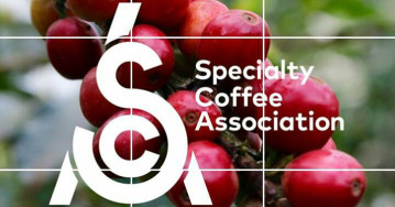 Specialty coffee (спешелти кофе)